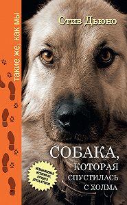 Стив Дьюно -Собака, которая спустилась с холма. Незабываемая история Лу, лучшего друга и героя