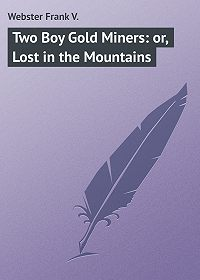 Frank Webster -Two Boy Gold Miners: or, Lost in the Mountains