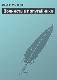 Илья Валерьевич Мельников -Волнистые попугайчики
