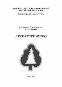 Алексей Володькин, Ольга Володькина, Евгений Жеряков - Лесоустройство