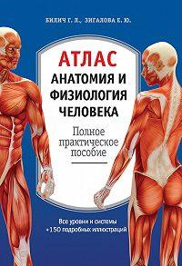 Габриэль Билич -Атлас: анатомия и физиология человека. Полное практическое пособие