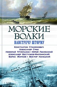 Александр Грин -Морские волки. Навстречу шторму (сборник)