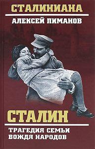 Валентин Жиляев -Сталин. Трагедия семьи вождя народов