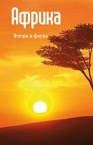 Илья Мельников -Африка: флора и фауна