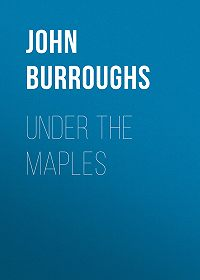 John Burroughs -Under the Maples