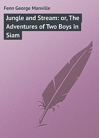 George Fenn -Jungle and Stream: or, The Adventures of Two Boys in Siam