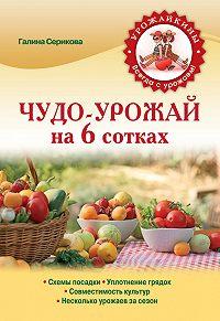 Галина Серикова -Чудо-урожай на 6 сотках