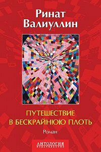 Ринат Валиуллин -Путешествие в бескрайнюю плоть