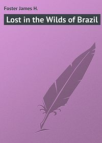 James Foster -Lost in the Wilds of Brazil