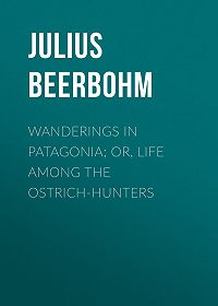 Julius Beerbohm -Wanderings in Patagonia; Or, Life Among the Ostrich-Hunters