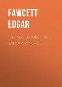 Edgar Fawcett -The Adventures of a Widow: A Novel