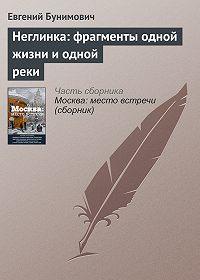 Евгений Бунимович -Неглинка: фрагменты одной жизни и одной реки