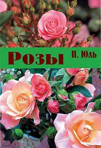 Петр Юль -Розы