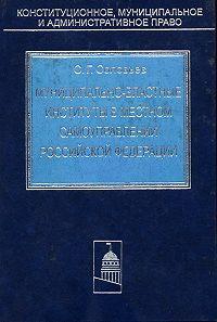 Сергей Соловьев - Муниципально-властные институты в местном самоуправлении Российской Федерации