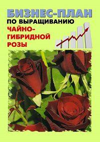 Павел Шешко -Бизнес-план по выращиванию чайно-гибридной розы
