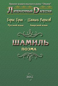 Борис Брик -Шамиль