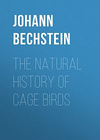 Johann Bechstein -The Natural History of Cage Birds