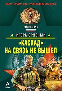 Игорь Срибный -«Каскад» на связь не вышел